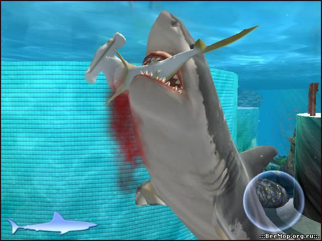 Игра про акул на компьютер скачать